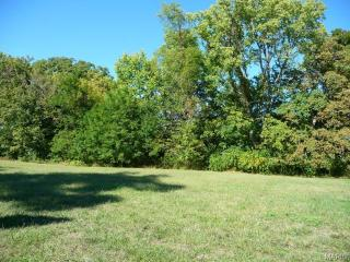 Lot 2 Courtyard Mill Lane, Chesterfield MO
