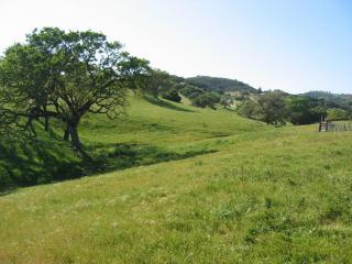 Jonata Park Road, Santa Barbara CA