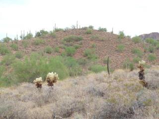 408XX North 7th Street, Phoenix AZ