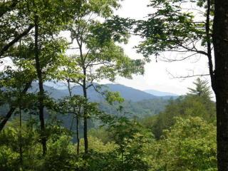 LT442 Pony Ghost Trail, Blue Ridge GA