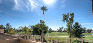 1171 West Honeysuckle Lane, Chandler AZ