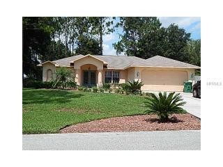 12115 Knotty Pine Loop, San Antonio, FL 33576