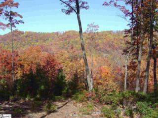 905 Mountain Summit Road, Travelers Rest SC