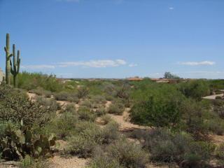 36448 North Wildflower Road, Carefree AZ
