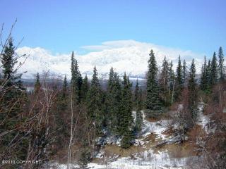 A014 Denali View Drive, Trapper Creek AK