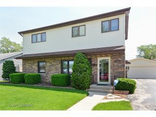 11025 Major Avenue, Chicago Ridge IL