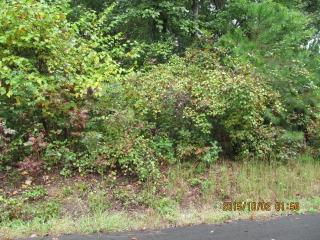 Brookhaven Drive, Chatsworth GA