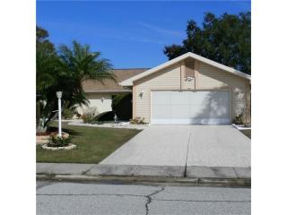 231 North Brockfield Drive, Sun City Center FL