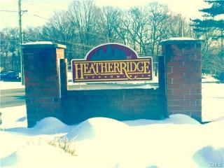 20 Heather Rdg, Shelton, CT 06484
