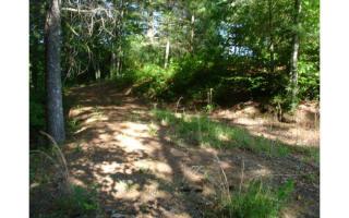 L345 Chickasaw Trail, Blue Ridge GA
