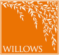 The Willows at Treviso by Renasci Homes
