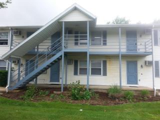 309 W Springfield Ave #3, Urbana, IL 61801