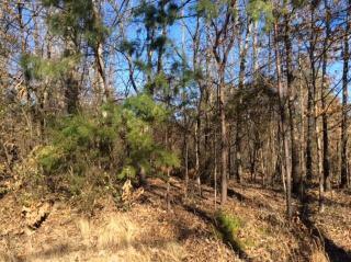 161 Daleyuhski Way, Loudon TN