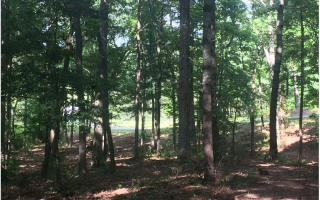 Lot 9 Fiddlers Cove, Blairsville GA