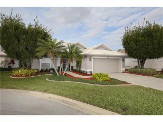 403 Pinewood Lake Drive, Venice FL