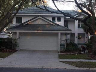 15885 Sanctuary Drive, Tampa FL