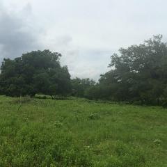 6238 Kovar Road, Fayetteville TX