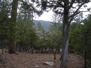 Lot 18 West Hidden Pines Loop, Pine AZ