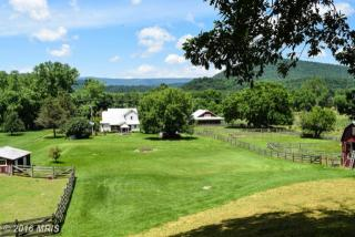 6981 State Road 259, Lost River WV