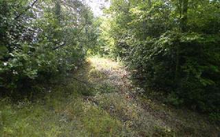 5 B Julie Mountain Trail, Hayesville NC