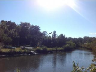 West 11454 Beaverdam Lane, Crystal River FL