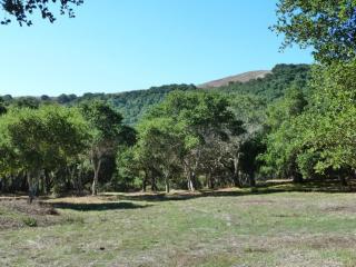 6 Rancho San Carlos Road, Carmel CA