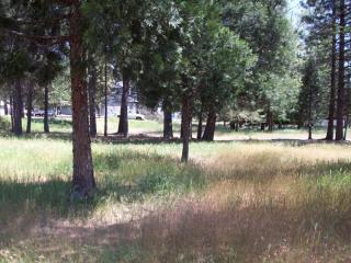 31450 Highway 3, Weaverville CA
