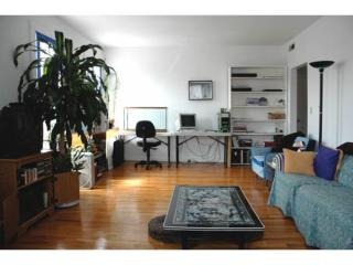 940 State St #3, New Haven, CT 06511