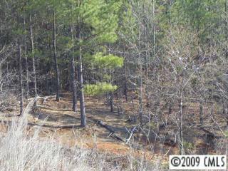 209 Rivercliff Drive, Stony Point NC