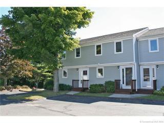 59 Mallard Cove, East Hampton CT