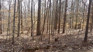 116 117 Long Meadow Drive, Clarksville VA