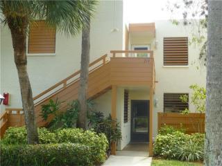214 Pineneedle Drive, Bradenton FL
