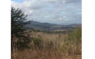 LOT14 High Meadows Trail, Morganton GA