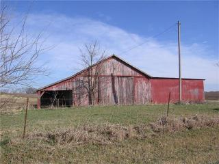 145-ACRES Cr 250, Palmyra MO