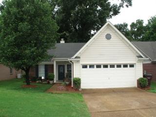 3777 Clarion Drive, Memphis TN