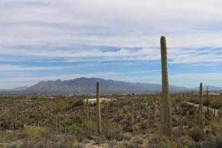 4620 West Crestview, Tucson AZ