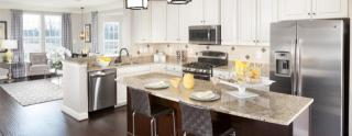 Holly Ridge Townhomes by Ryan Homes
