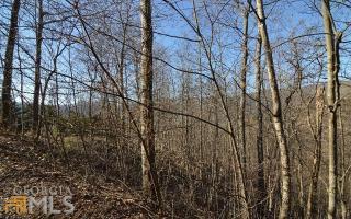Bear Trail #1617, Hiawassee GA