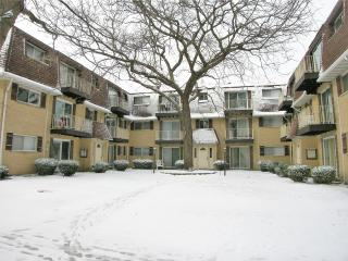 8558 West Catherine Avenue #3S, Chicago IL