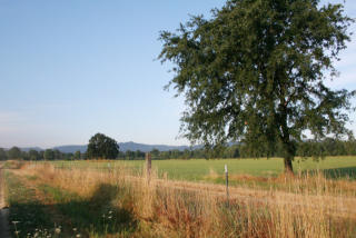 1080 Hearst Road, Willits CA
