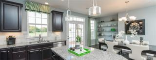 Beechtree Towns by Ryan Homes