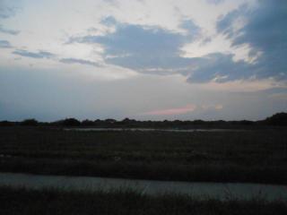 6310 Alexis Drive, Corpus Christi TX