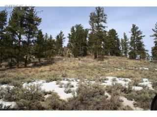 34 Beartrap Road, Red Feather Lakes CO