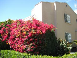 8901 Clifton Way, Beverly Hills, CA 90211