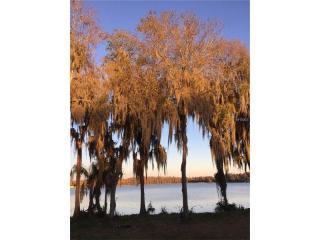 18716 Cypress Shores Drive, Lutz FL