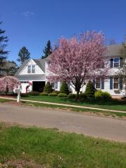 30 Sbona Drive, Middletown CT