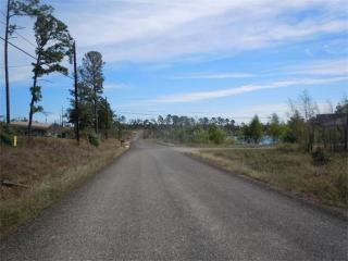 148 Pine Shadow Lane, Bastrop TX