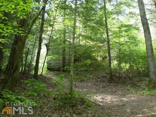 Mitchell Trail #, 104, Canton GA