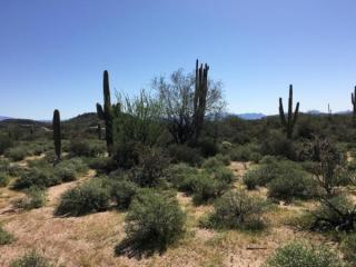270XX North 168th Street #-1, Scottsdale AZ
