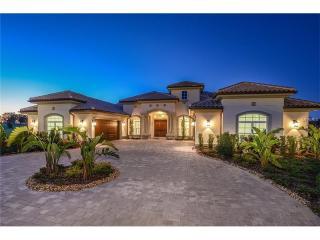 12202 Stonelake Ranch Boulevard, Thonotosassa FL
